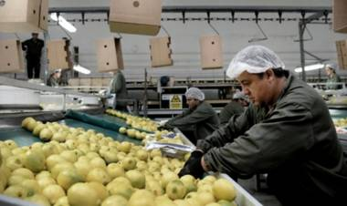 Desde mayo, la Unión Europea reabre su mercado a los frutos cítricos argentinos