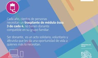 El 1 de Abril se celebra el Día del Donante de Médula Ósea
