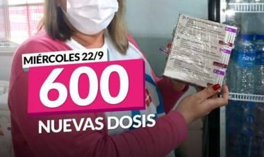 Continúan llegando segunda dosis de la vacuna contra el COVID-19