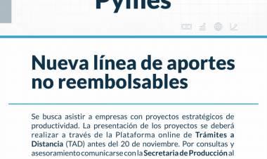 Atención Pymes: se lanzó una línea de aportes no reembolsables