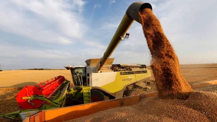 El campo pide que la medida de no vender carne se extienda a los granos