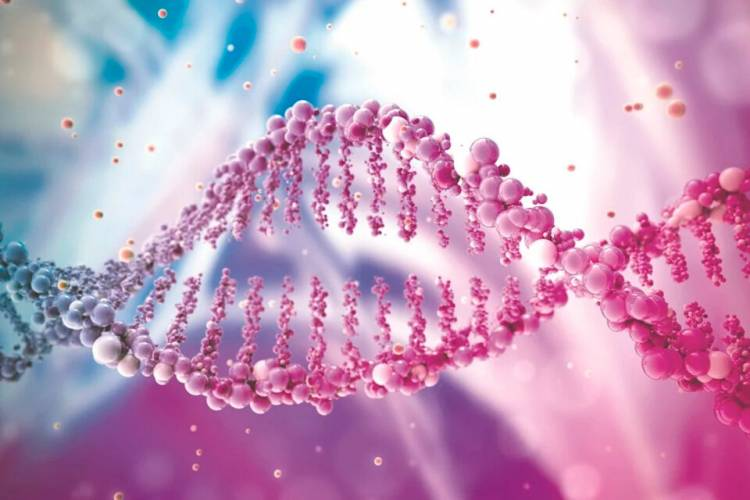 Logran secuenciar por primera vez un genoma humano completo