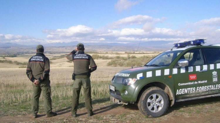Efemerides: Día Mundial de los Guardas Forestales